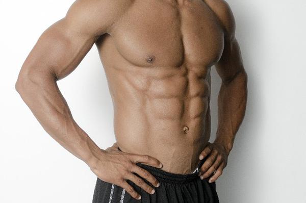 基礎代謝と筋肉